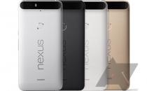 Nexus 6P: prezzo, uscita per lItalia