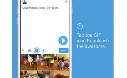 GIF su Twitter: condividere e cercare immagini animate è realtà