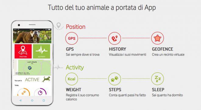Vodafone Kippy: il collare tech che geolocalizza il tuo animale domestico