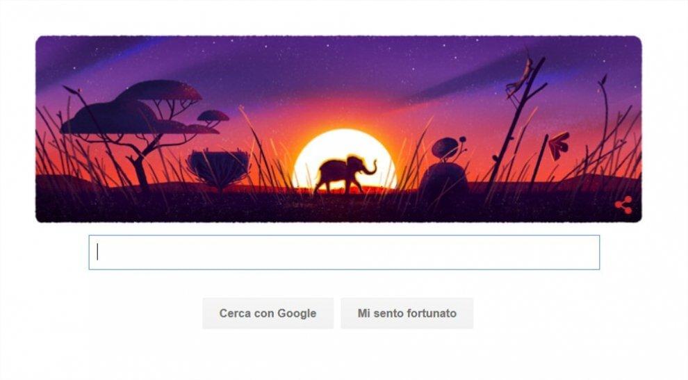 Tartaruga Giornata della Terra elefante