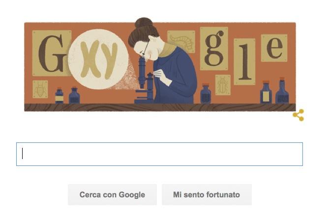 Google Doodle per Nettie Stevens e i cromosomi sessuali