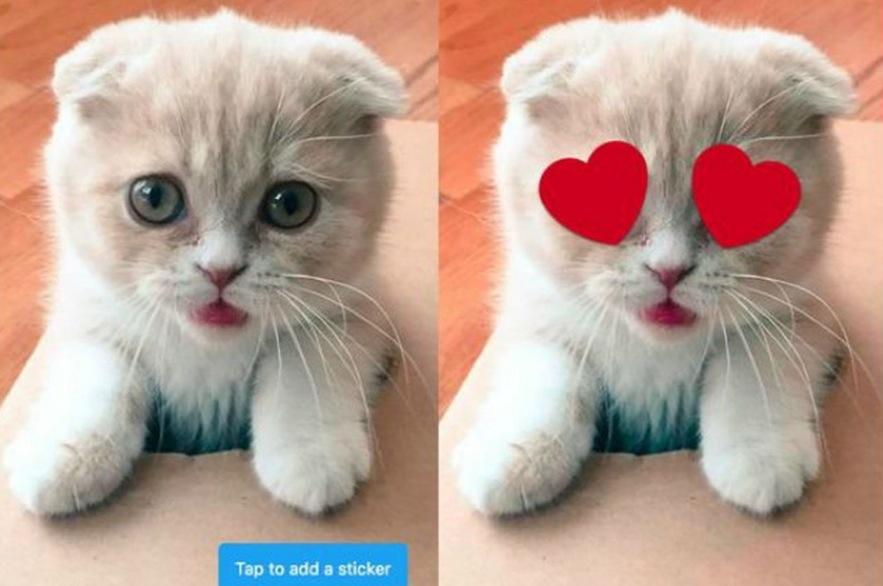 Twitter: geotagging e stickers, tutte le novità