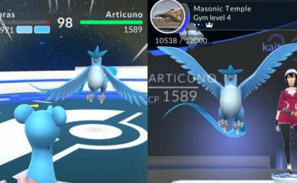 Pokemon Go, Articuno trovato? La probabile bufala o fake