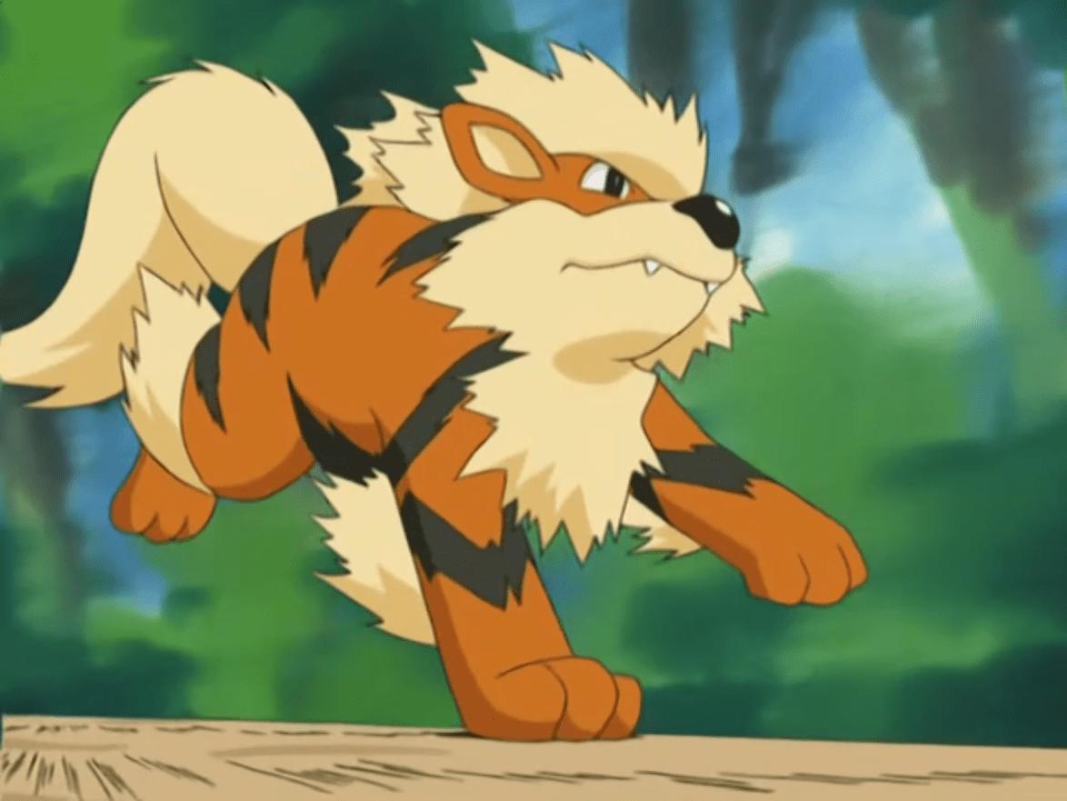 Pokemon Go: i migliori contro Arcanine per sconfiggerlo nelle palestre
