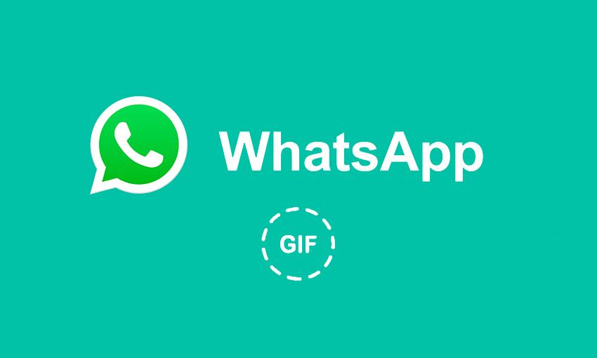 WhatsApp avrà un motore di ricerca GIF