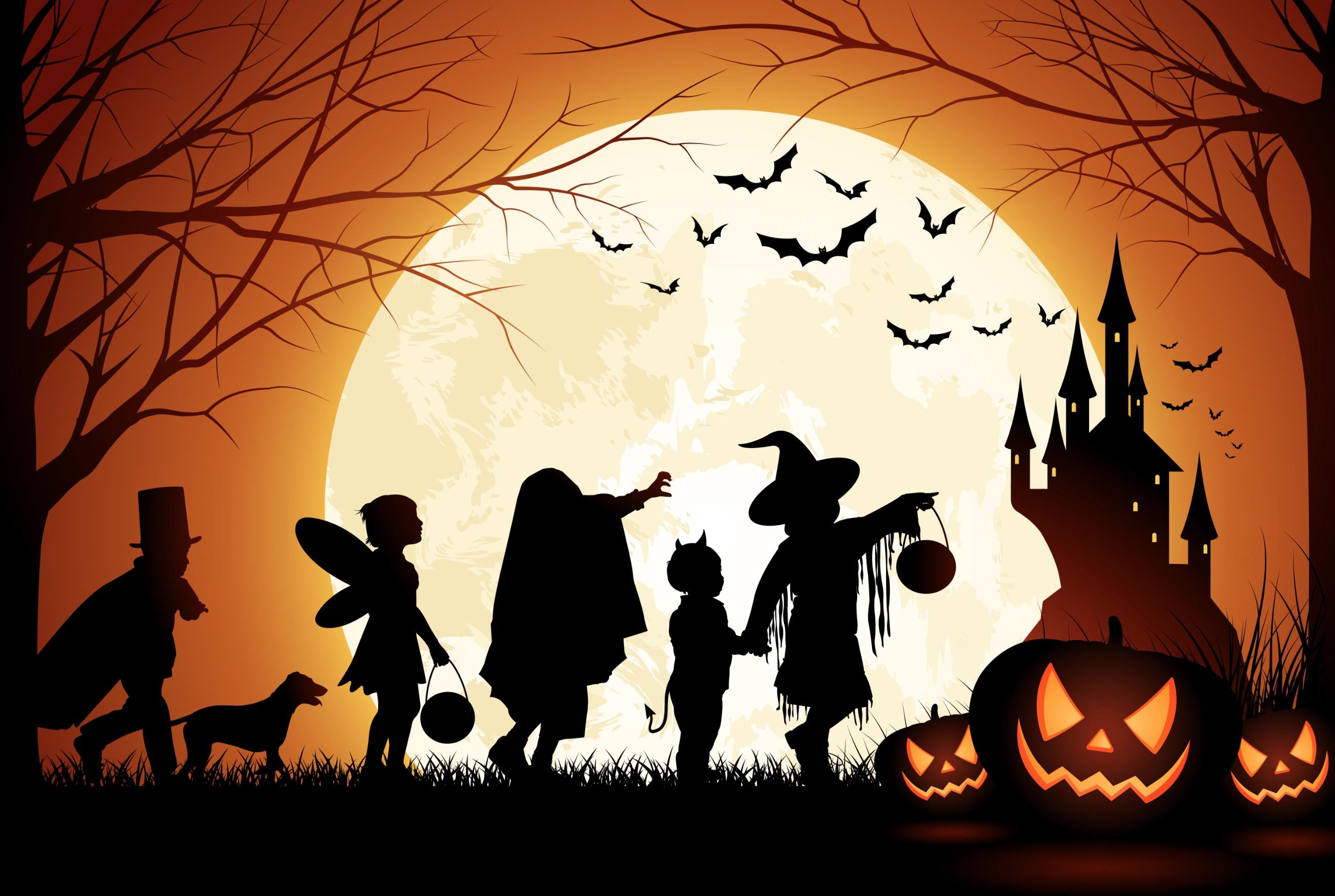 Halloween notte immagine