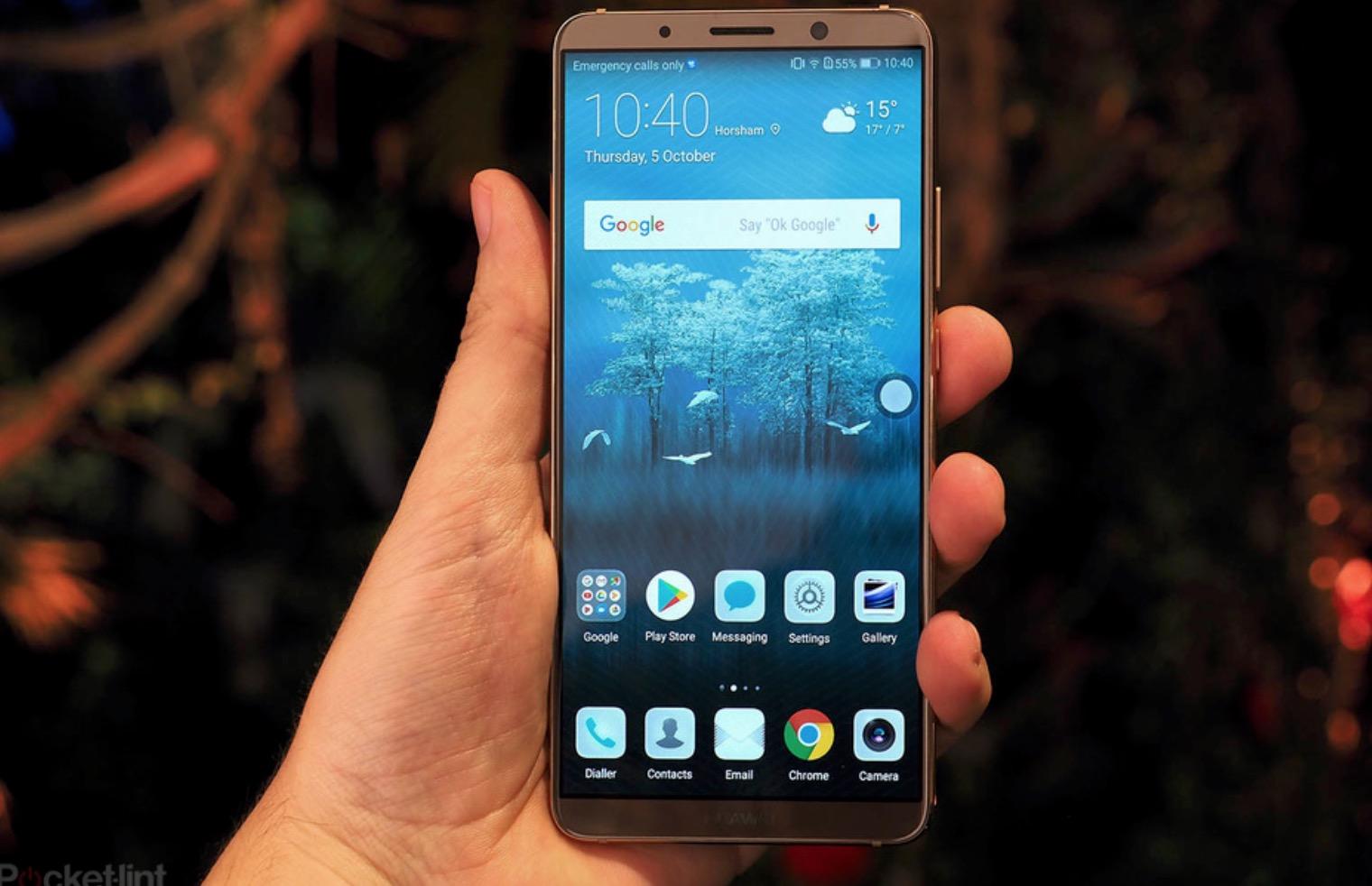 Huawei Mate 10 Pro smartphone batteria