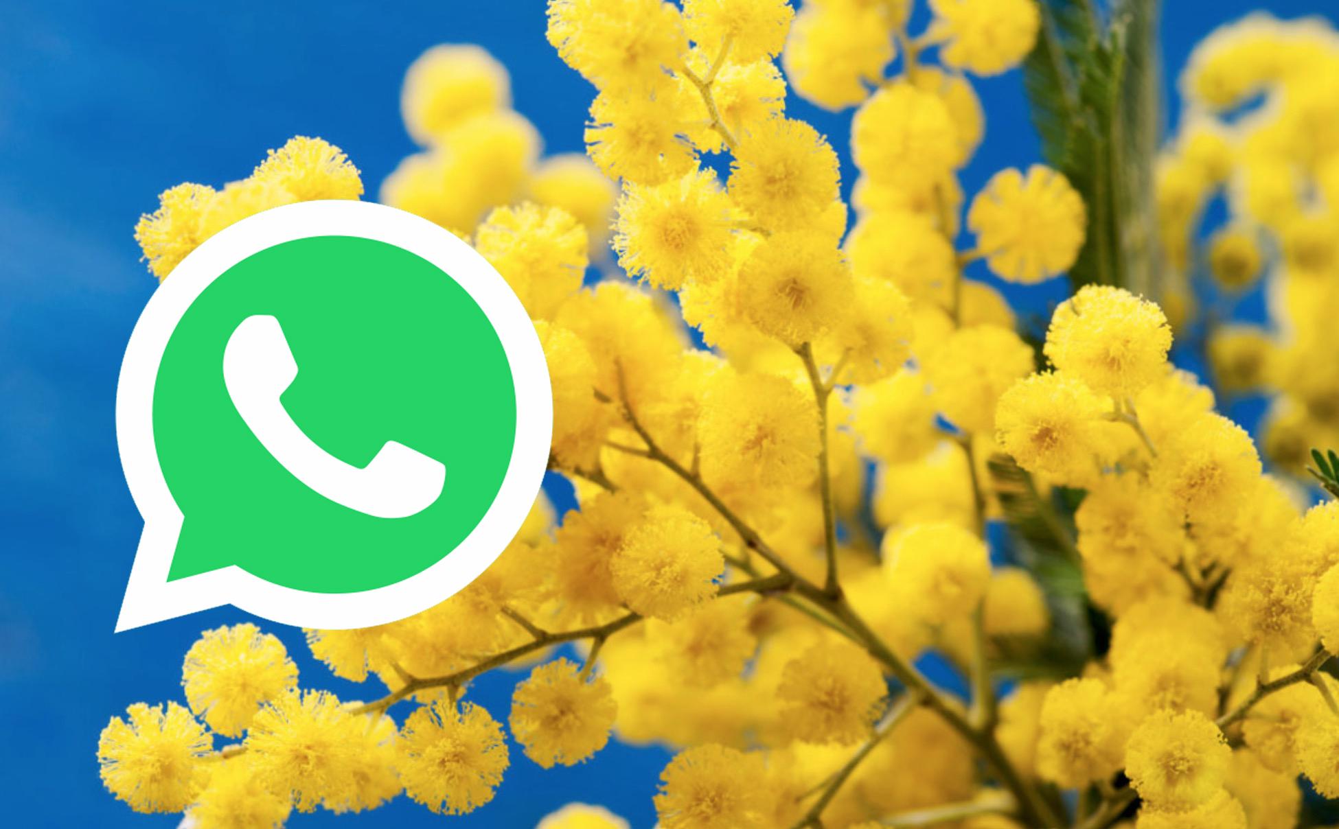Festa della Donna 2018: migliori GIF per WhatsApp