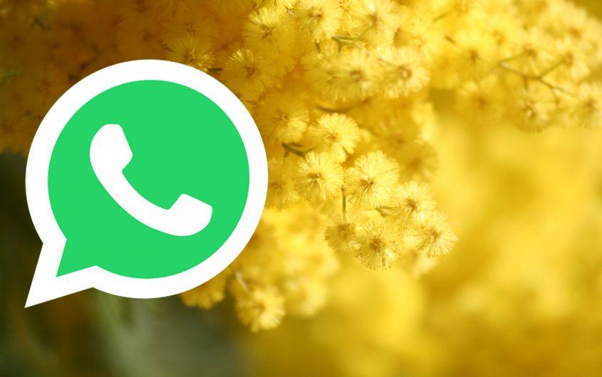 Festa della Donna 2018: le migliori immagini per WhatsApp