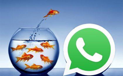 Pesce d'Aprile 2018: le GIF più belle per WhatsApp