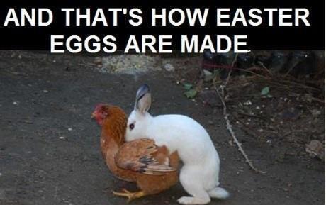 Uova di Pasqua come sono fatte