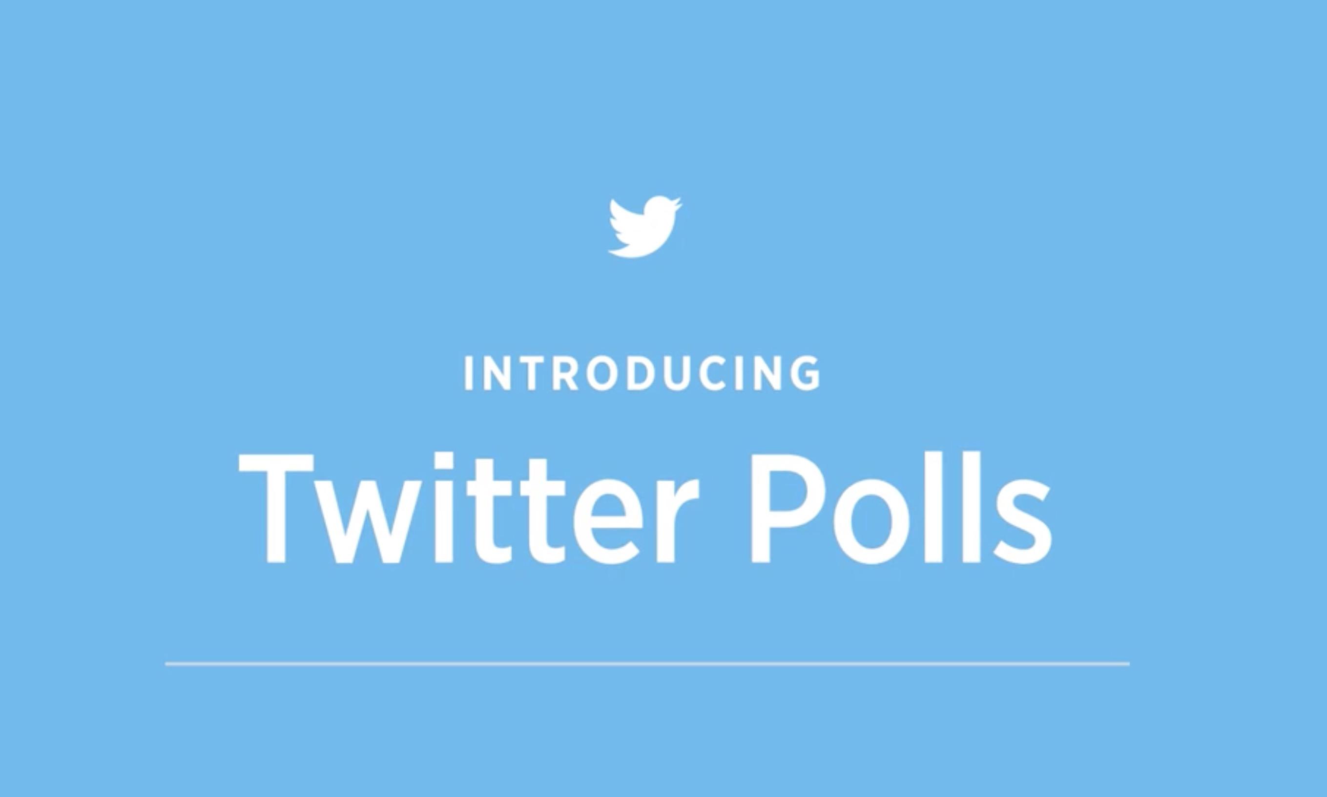 Twitter annuncia Twitter Poll